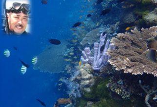 Menggali Harta Karun Terpendam Laut Maluku